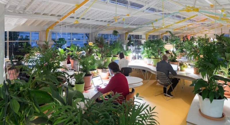 Ufficio Open Space Opinioni : Presentato ad orgatec l ufficio secondo fantoni